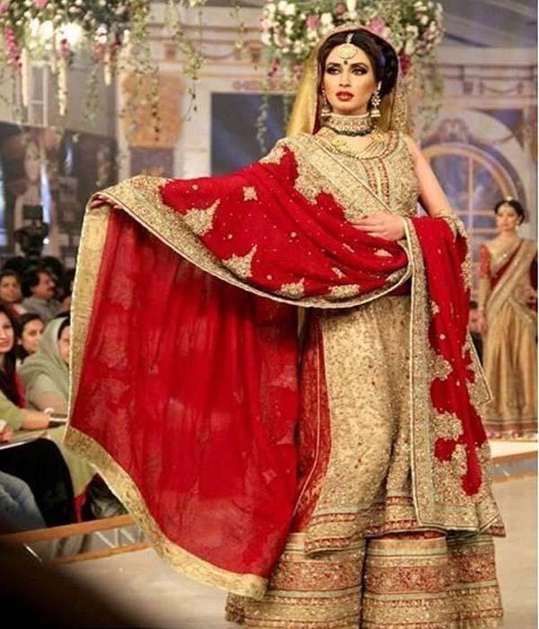 لباس پاکستانی مجلسی مدل جدید شیک و زیبا