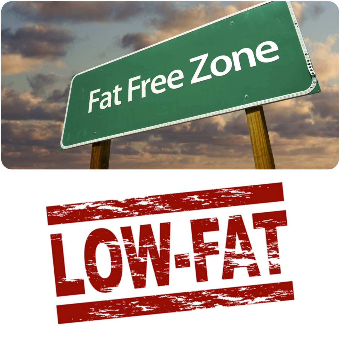 Say No to Fats and Eat Healthy Foods....styloplanet.com