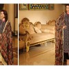 Shaista Cloths Velvet Wool And Pure Shamose Winter Collection 2016…styloplanet (15)