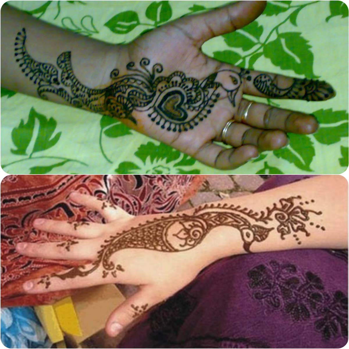 Latest Peacock Mehndi Designs For Girls 2016-2017 (6)