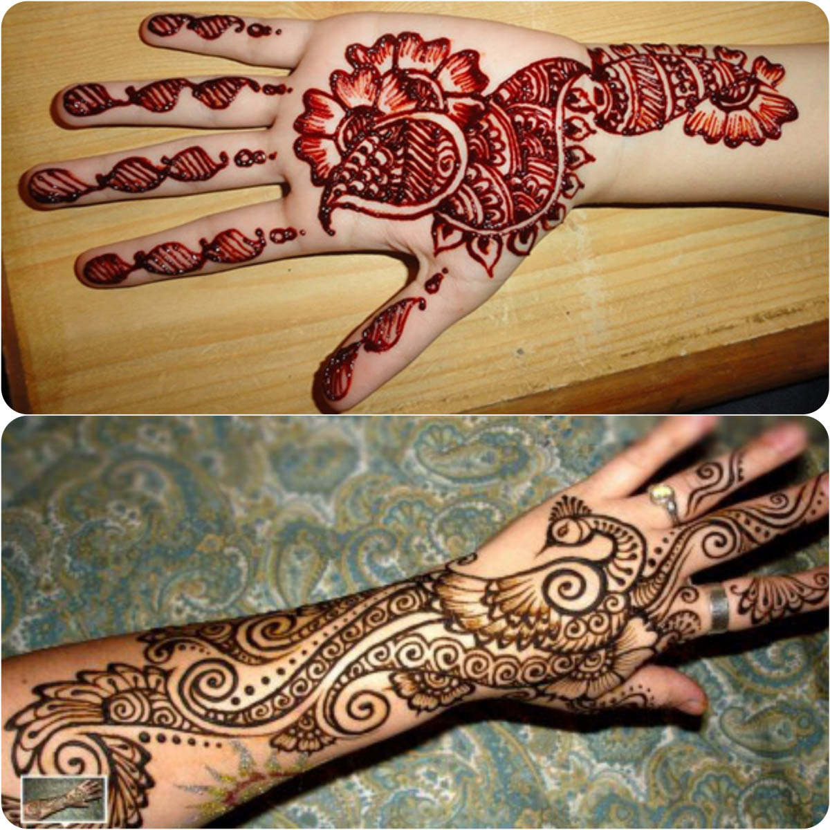 Latest Peacock Mehndi Designs For Girls 2016-2017 (9)
