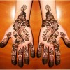 Shaded Mehndi Designs For Girls 2016-2107 (11)