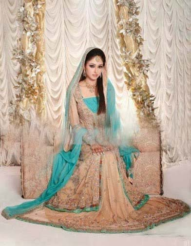 Stylish Walima Dresses For Wedding Pakistani Brides 2016-2017 (19)