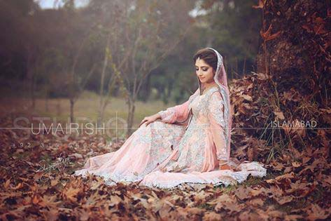 Stylish Walima Dresses For Wedding Pakistani Brides 2016-2017 (23)