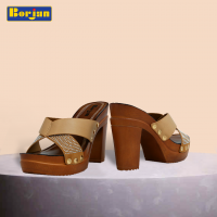 Borjan Shoes Latest Summer Collection for Women 2017-2018 (6)
