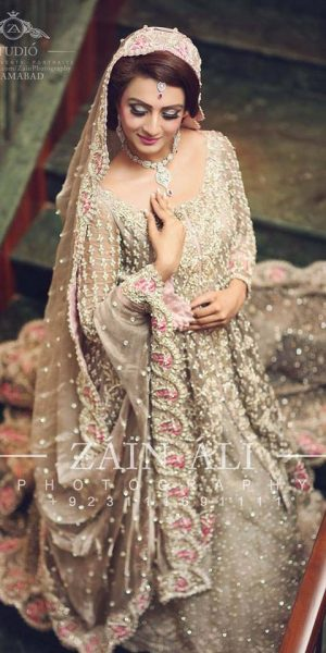 Pakistai Bridals Beautiful Walima Dresses 2017 Latest Trends (17)