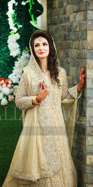 Pakistai Bridals Beautiful Walima Dresses 2017 Latest Trends (6)