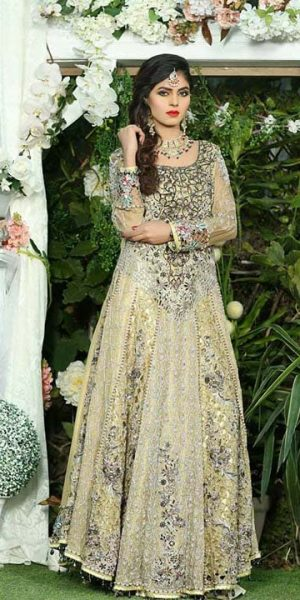 Aisha Imran Bridal and Formal Collection 2018-19 Changing The Fashion Standards Of Pakistan (10)