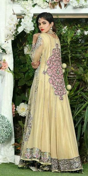 Aisha Imran Bridal and Formal Collection 2018-19 Changing The Fashion Standards Of Pakistan (11)