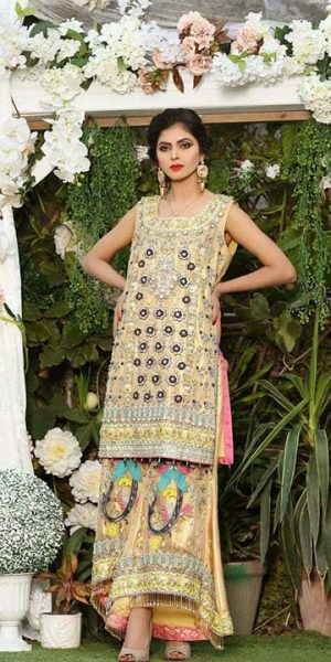 Aisha Imran Bridal and Formal Collection 2018-19 Changing The Fashion Standards Of Pakistan (3)