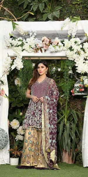 Aisha Imran Bridal and Formal Collection 2018-19 Changing The Fashion Standards Of Pakistan (6)
