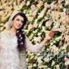Bridal Walima Dresses Collection For Walima Day 2016-2017….styloplanet (18)