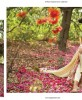 Orient Textiles Latest SpringSummer Lawn kurtis Collection 2016-2017…styloplanet (62)