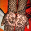 Latest Peacock Mehndi Designs For Girls 2016-2017 (38)