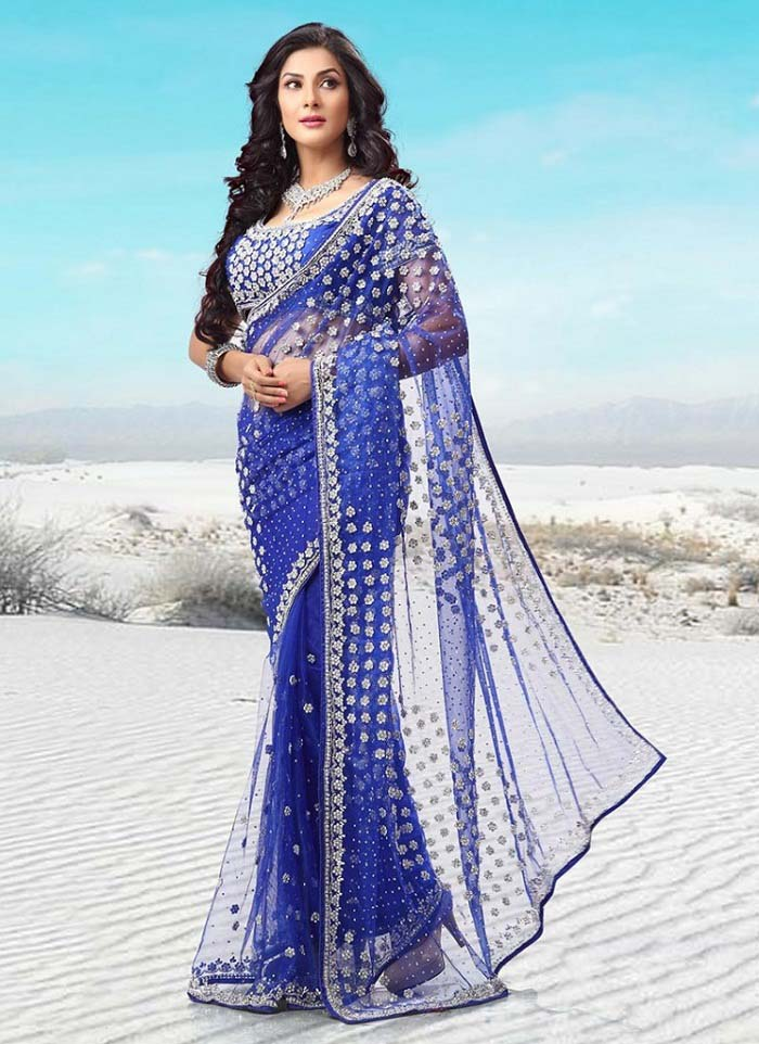 Pakistani & Indian Designers Party Wear Sarees Collection 2016-2107 (11)