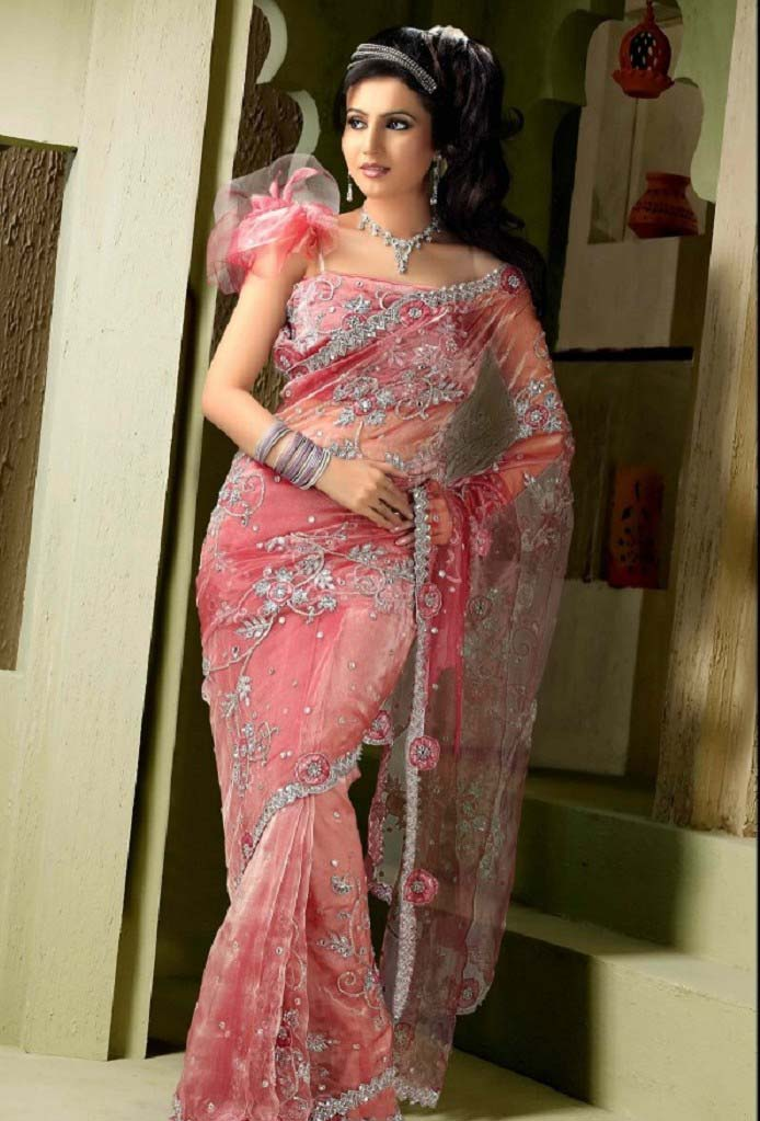 Pakistani & Indian Designers Party Wear Sarees Collection 2016-2107 (17)