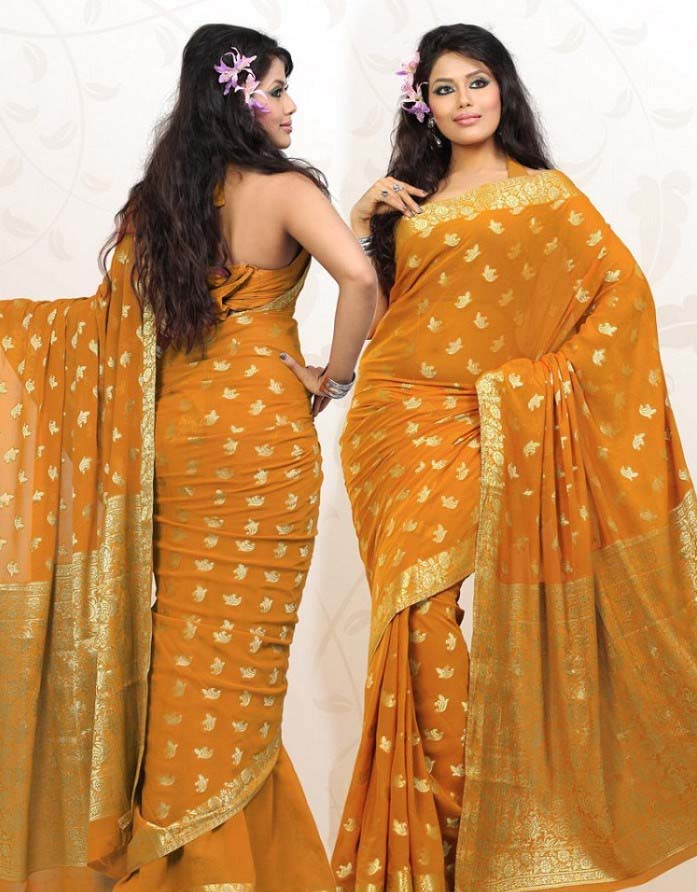 Pakistani & Indian Designers Party Wear Sarees Collection 2016-2107 (22)