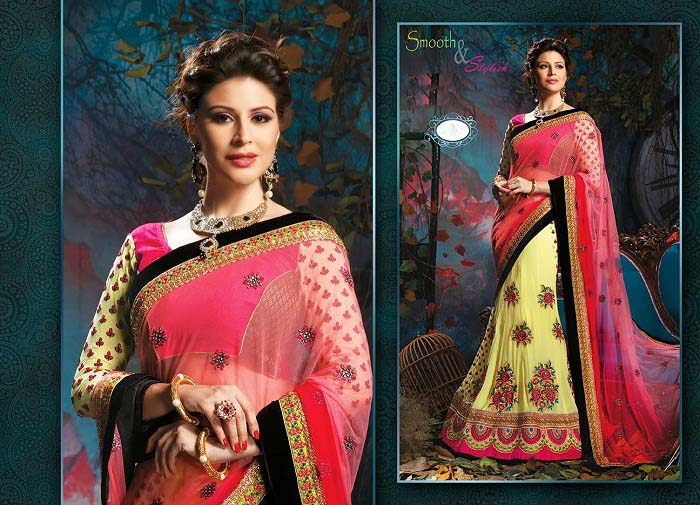 Pakistani & Indian Designers Party Wear Sarees Collection 2016-2107 (5)