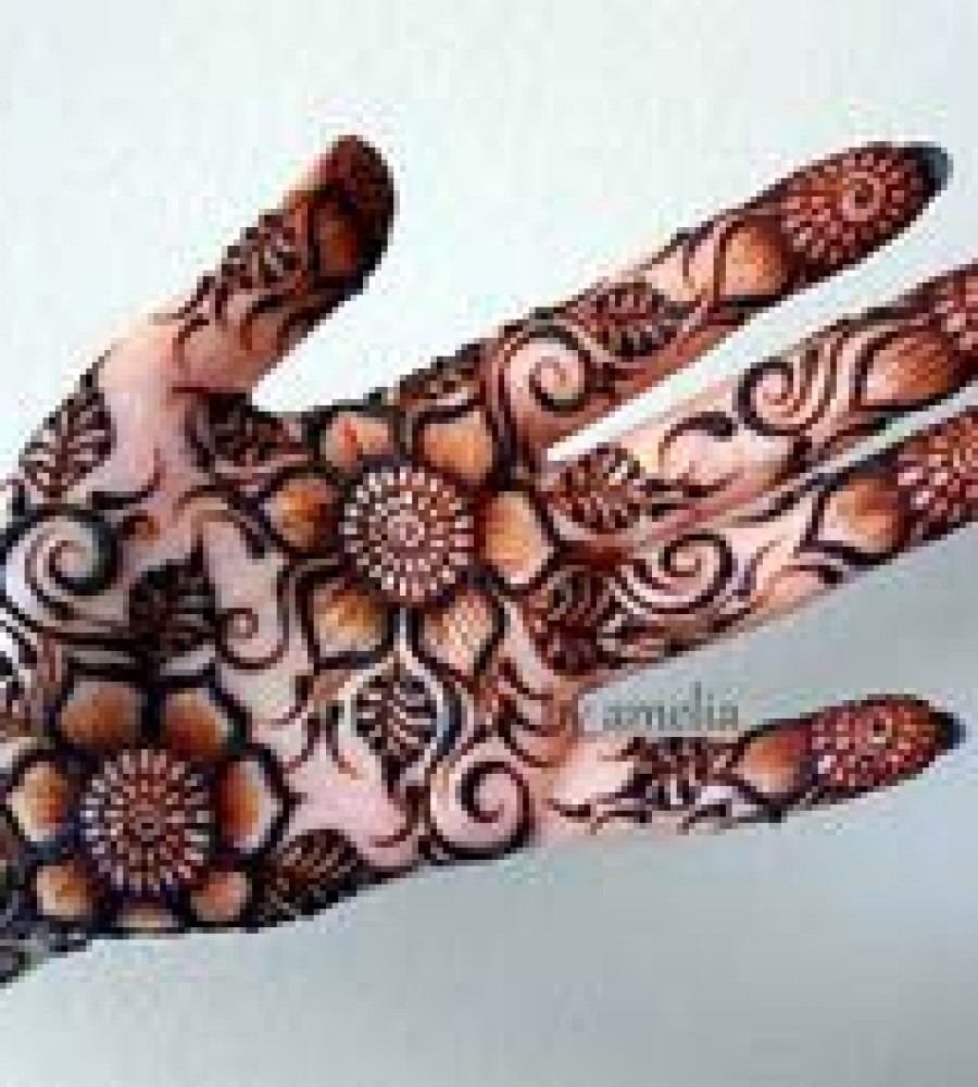 Shaded Mehndi Designs For Girls 2016-2107 (26)