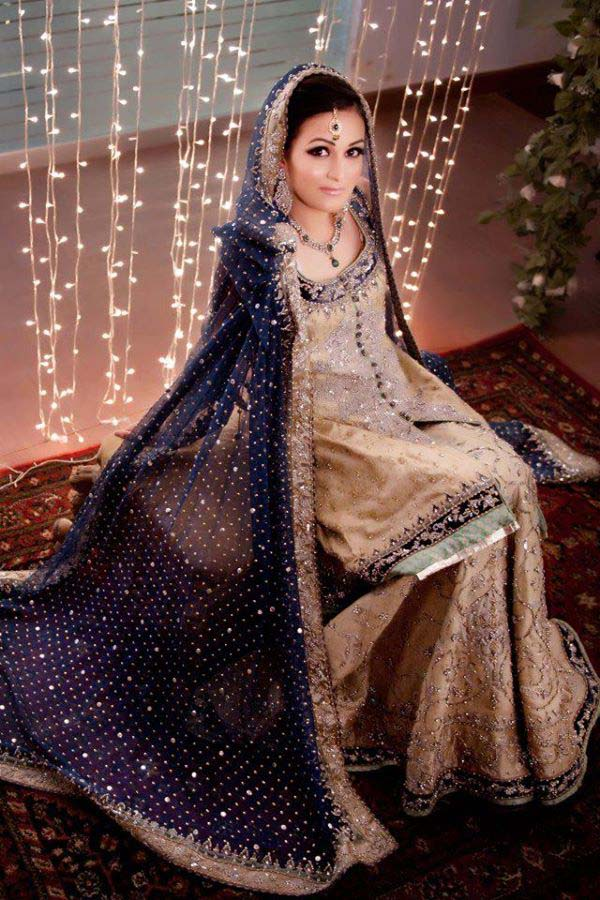 Stylish Walima Dresses For Wedding Pakistani Brides 2016-2017 (12)