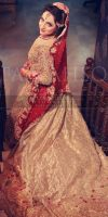 latest-bridal-dresses-designs-trends-2016-2017-collection-for-wedding-brides-22