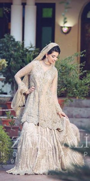 Pakistai Bridals Beautiful Walima Dresses 2017 Latest Trends (23)