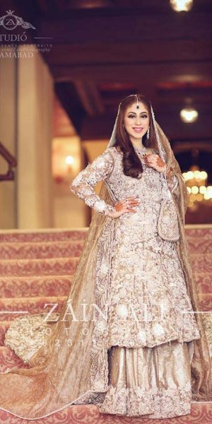 Pakistai Bridals Beautiful Walima Dresses 2017 Latest Trends (24)