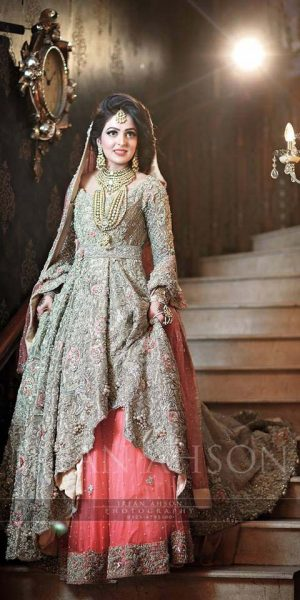 Pakistai Bridals Beautiful Walima Dresses 2017 Latest Trends (5)